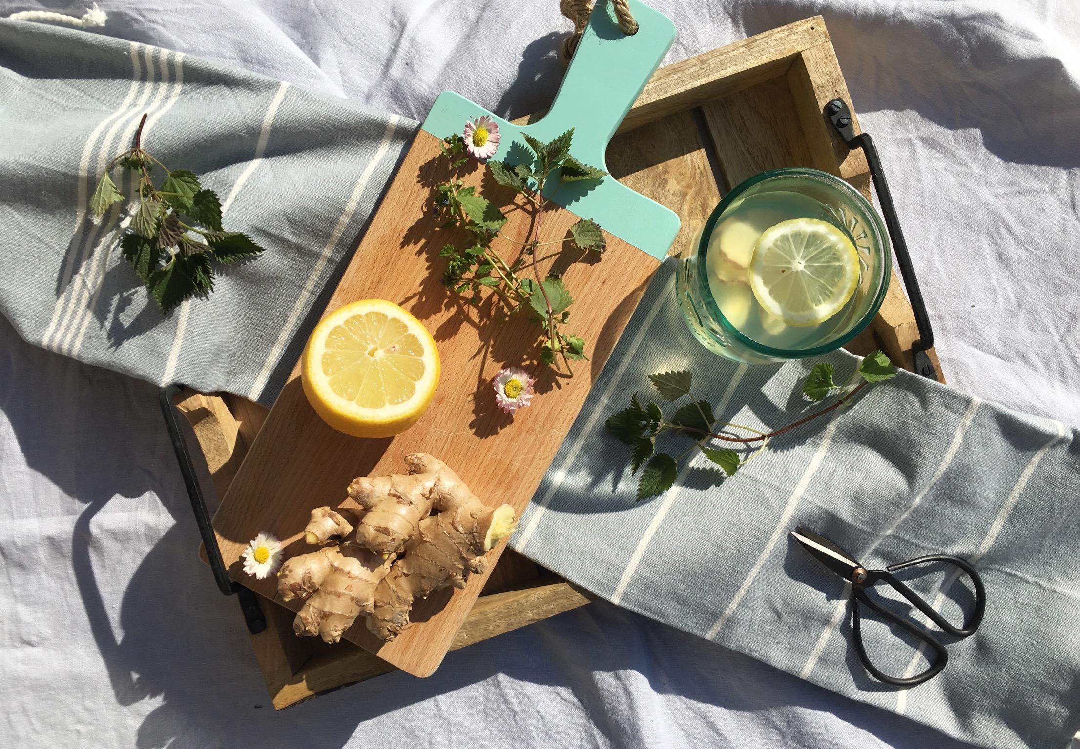 Ingwer Zitronen Wasser mit Wildkräutern